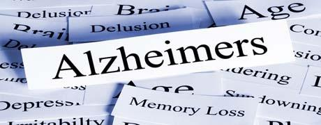 Antioxidants Prove Promising in Alzheimer's Research
