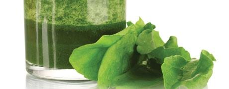 The 'Green Revolution': Aloe & Green Foods Thrive